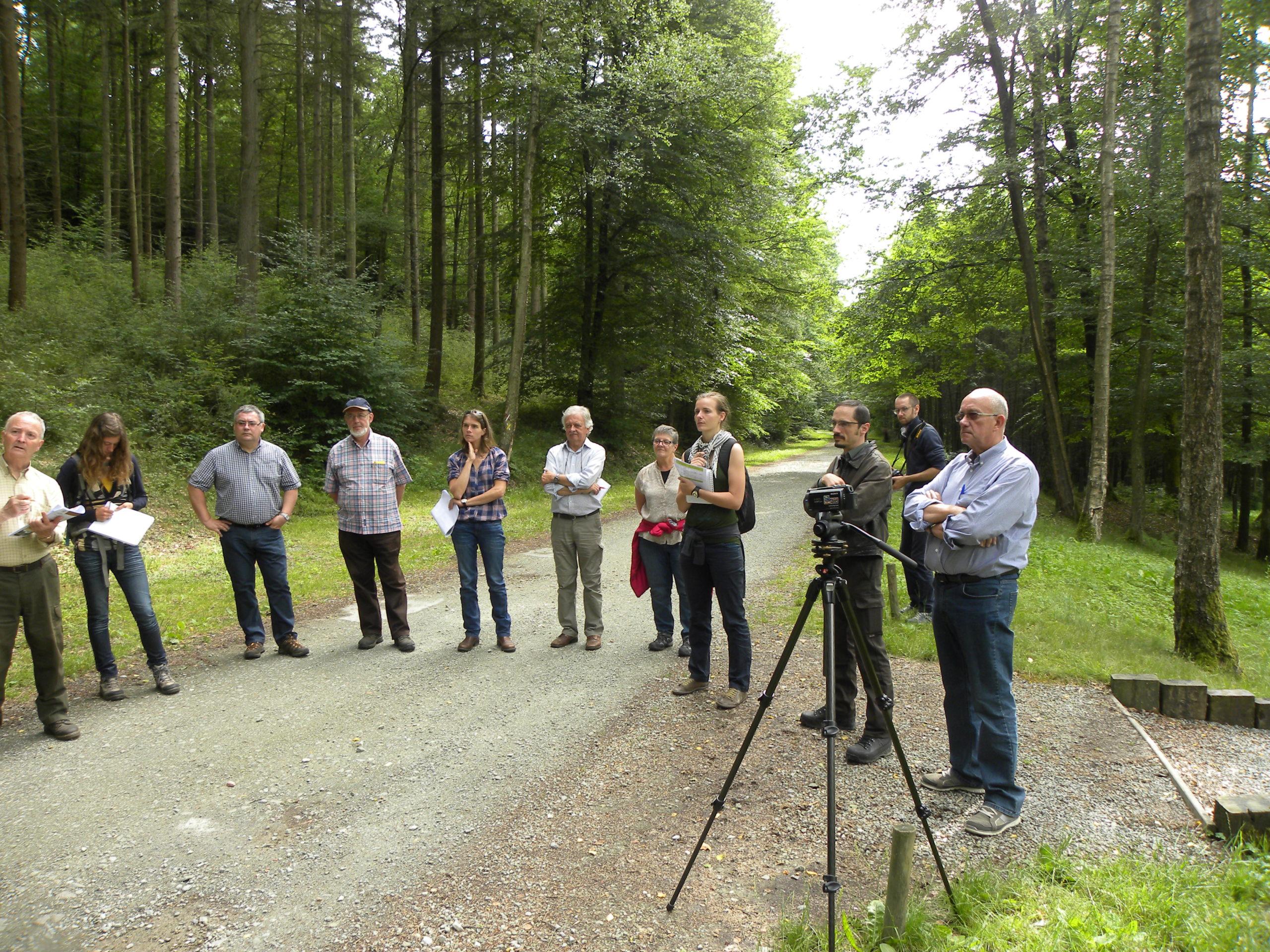 1ere charte forestière multi-acteurs de Wallonie