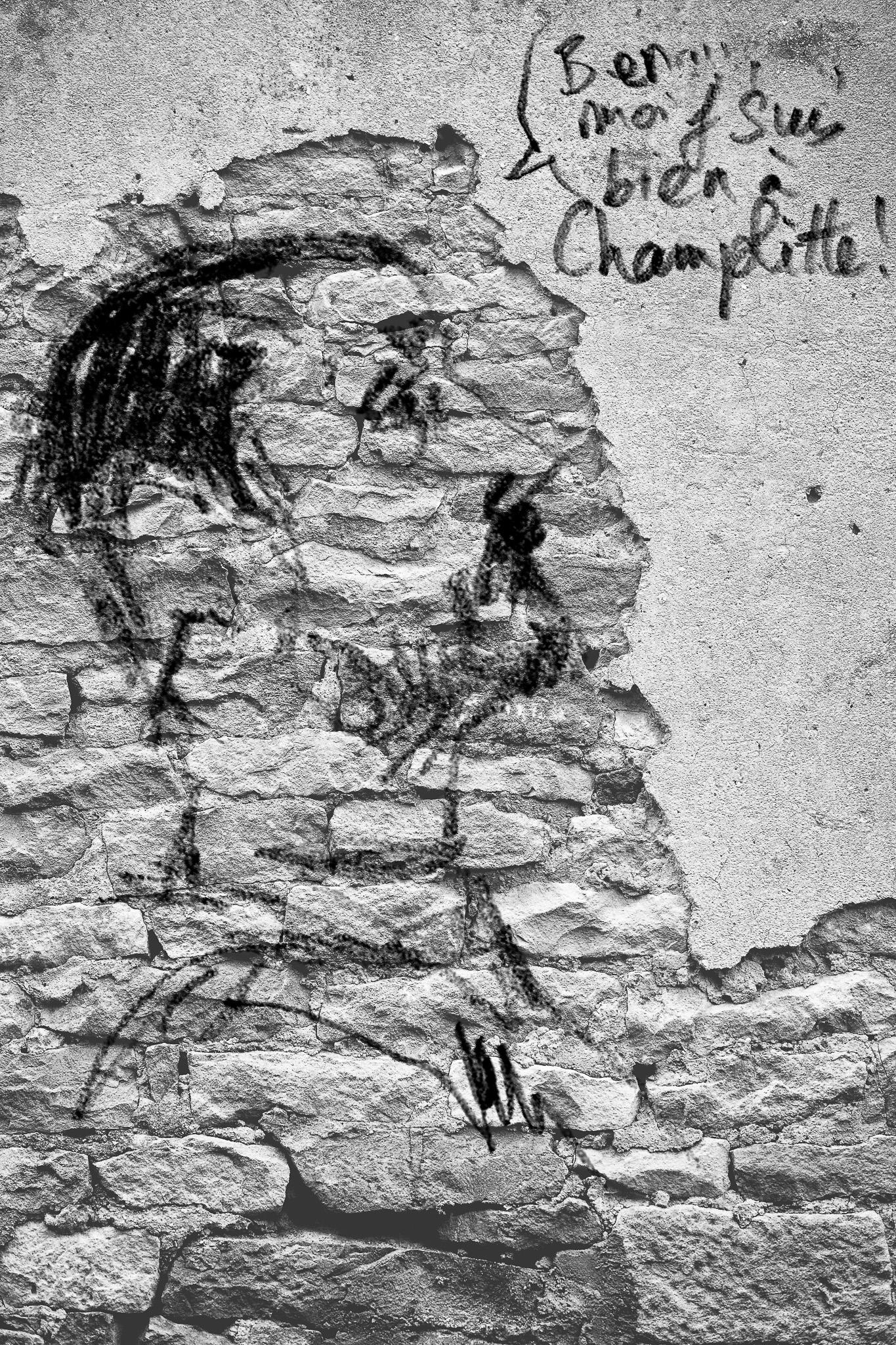 Résidence paysagère et architecturale Champlitte «rêvé»